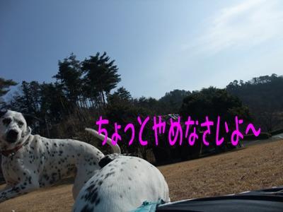 blog_01100076