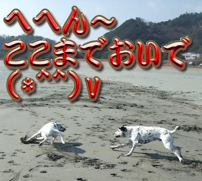 blog_01180009