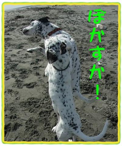 blog_01300050