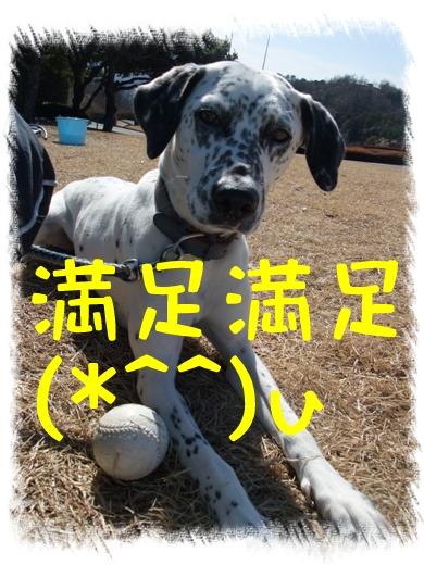 blog_02070104
