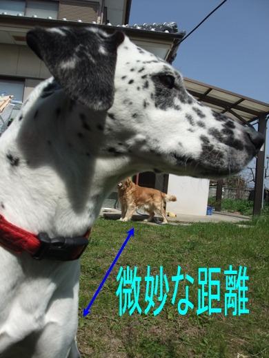 blog_03220006