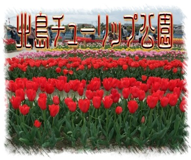 blog2010_04110060