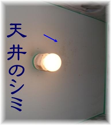 2010_05030006