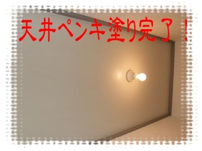 2010_05030017