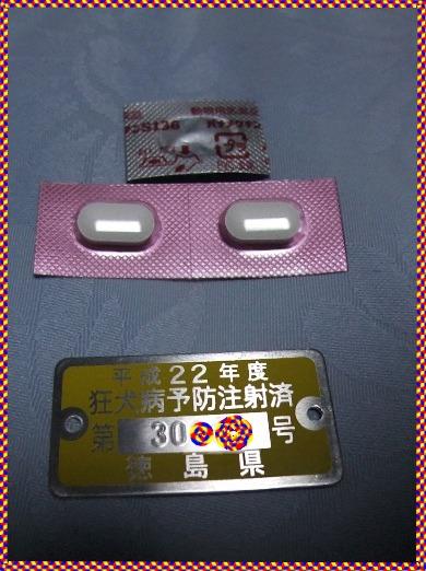 2010_05230007
