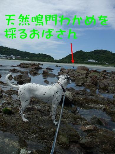 blog2010_05300015