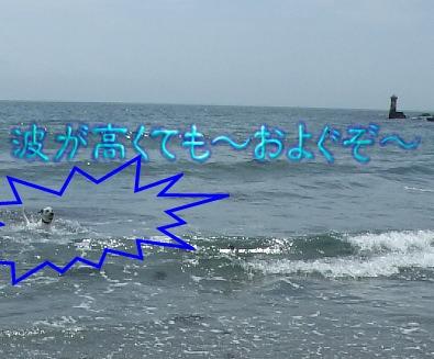 blog2010_06270021