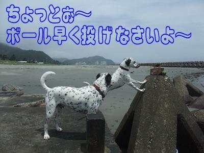 blog2010_06270036