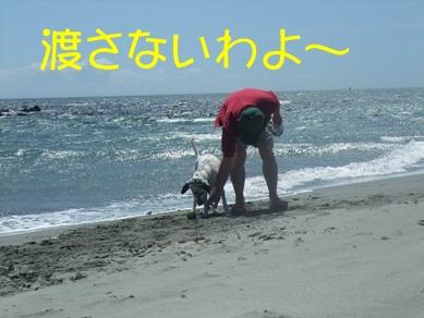 blog2010_07170160