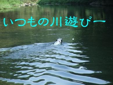 blog2010_08220065