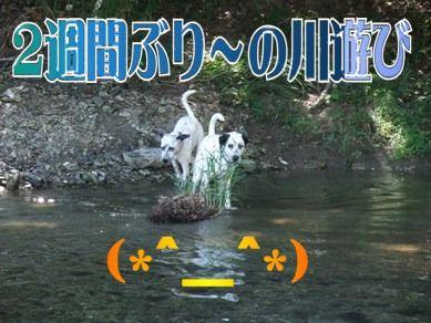 blog2010_09050007