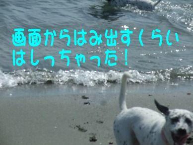 blog2010_09180017