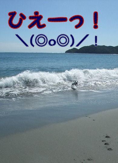 blog2010_09260025