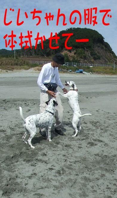 blog2010_09260034
