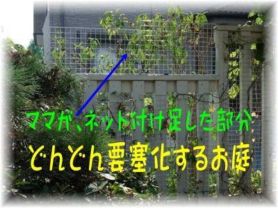 blog2010_09190024