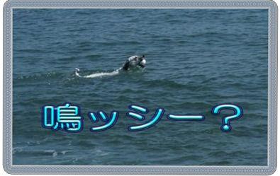 blog2010_10030017