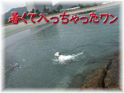 blog_11130012