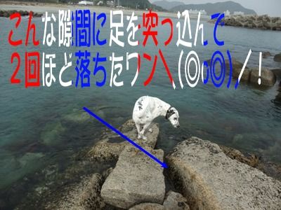blog_11130015