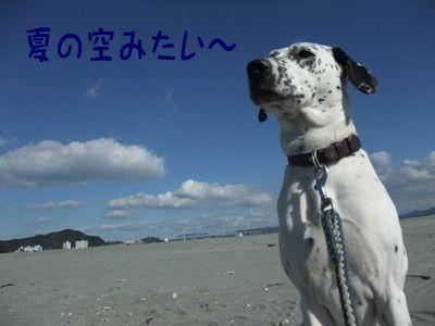 blog_1128kyoto0034