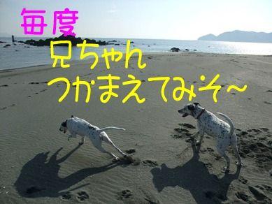 blog_12190023