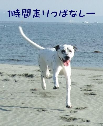 blog_12190016