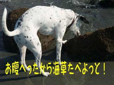 blog_12190043