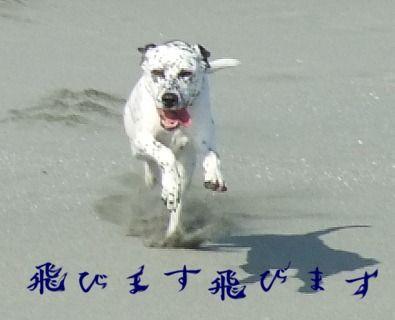blog_12190035