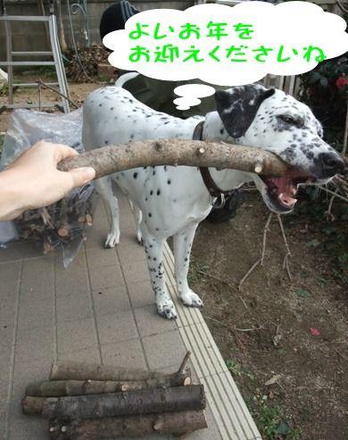blog_12300003