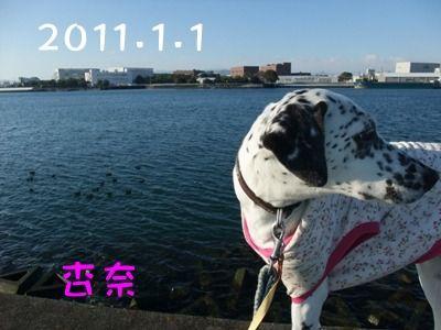 blog12310014