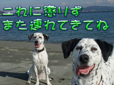 blog_01080035