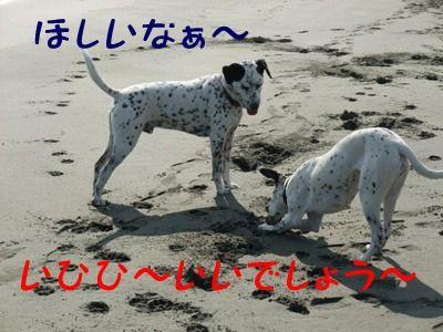 blog_01220022