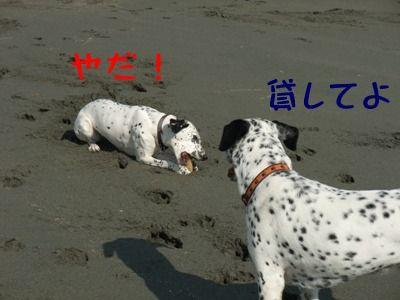 blog_01220023