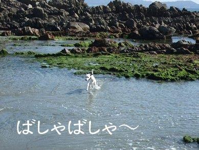 blog_02190022
