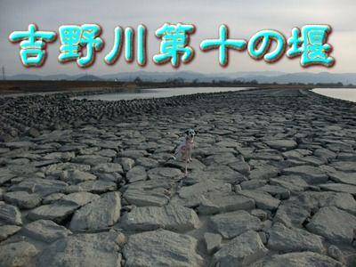 blog_02260030