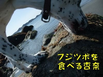blog_03050002