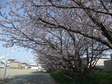 blog_04090010