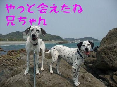 blog_04300001