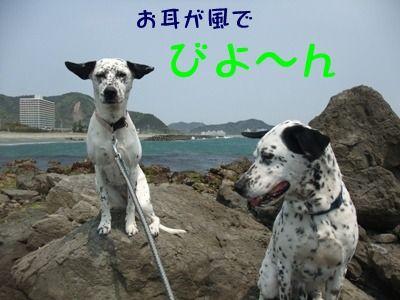 blog_04300003
