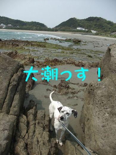 blog_04300004