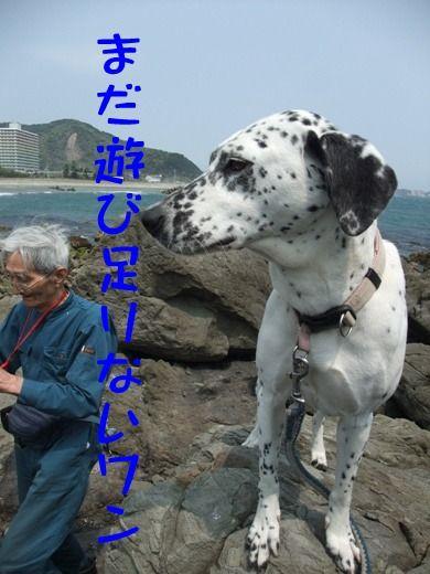 blog_04300011