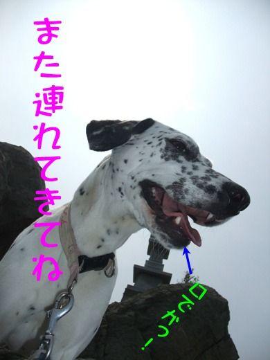 blog04300008