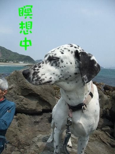 blog_04300010