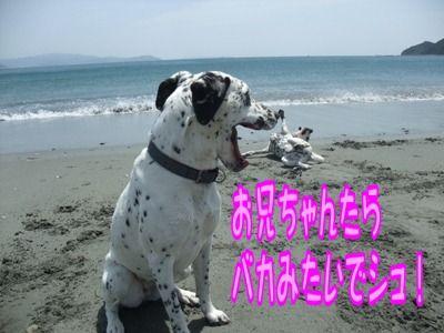 blog_05150004