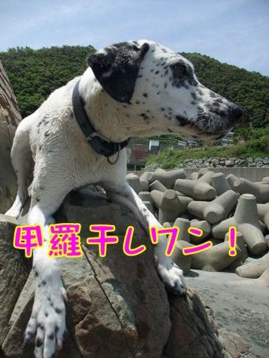 blog_05150018