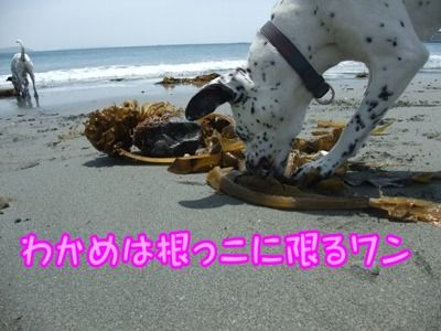blog_05150007