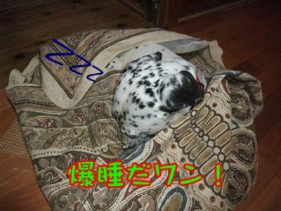blog_05150047
