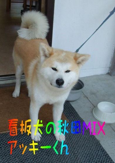 blog_05200047