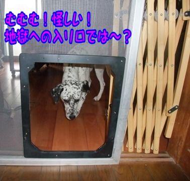 blog_05290003
