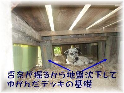 blog_08060016