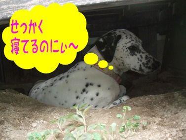 blog_08060014